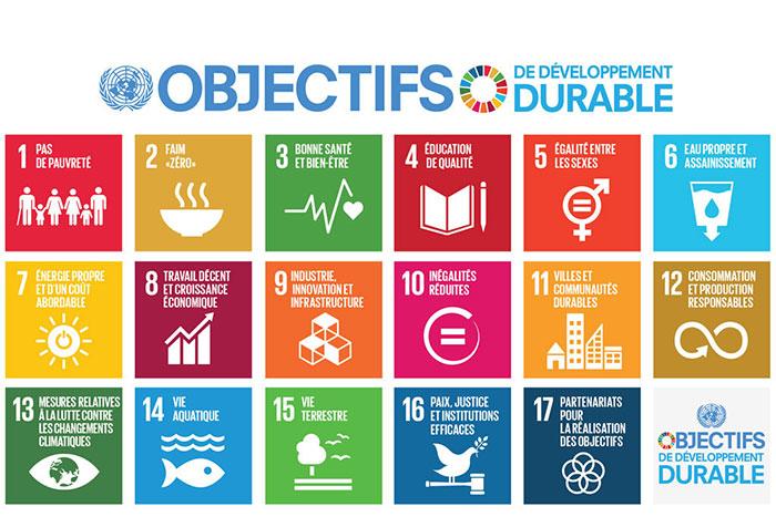 Djouman connecte les acteurs du développement durable en Afrique